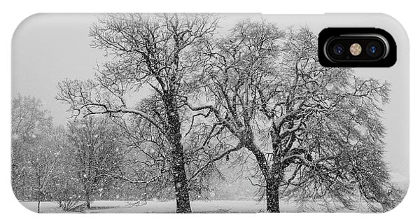 Two Sister Trees IPhone Case