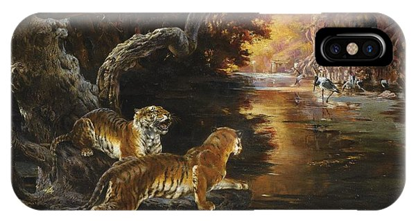 Two Tigers On The Hunt IPhone Case