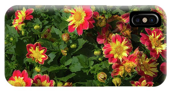 IPhone Case featuring the photograph Two Tone Dahlias by John Brink