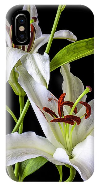 Stamen iPhone Case - Two Wonderful Lilies  by Garry Gay