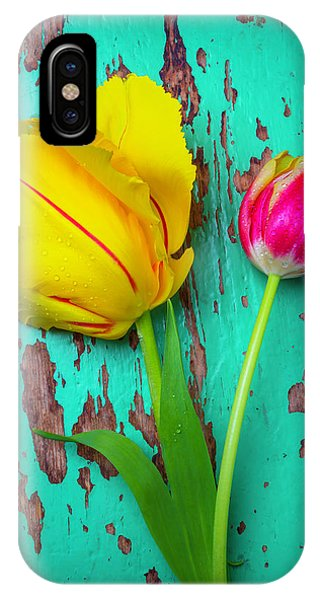 Two Yellow Red Tulips IPhone Case