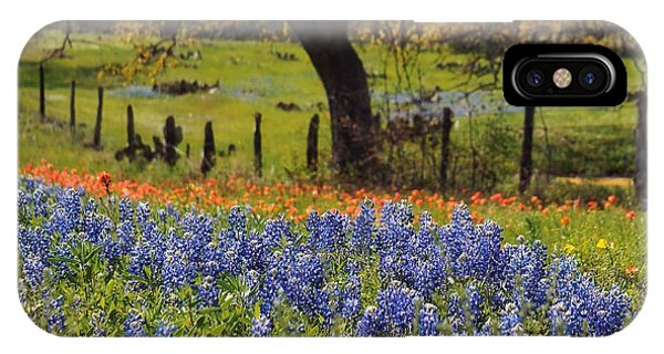 Tx Tradition, Bluebonnets IPhone Case