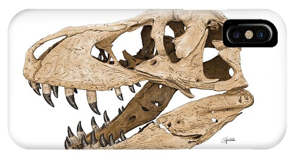 Tyrannosaurus Skull IPhone Case