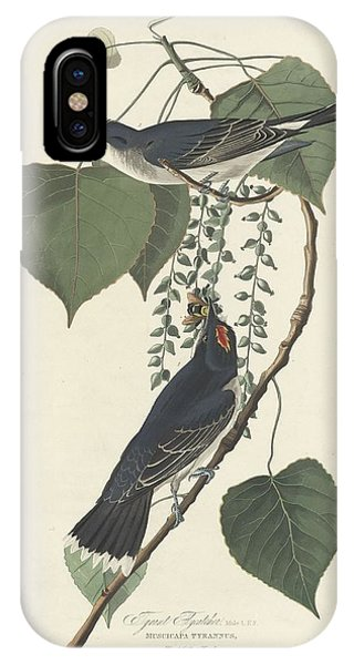 Tyrant Flycatcher IPhone Case