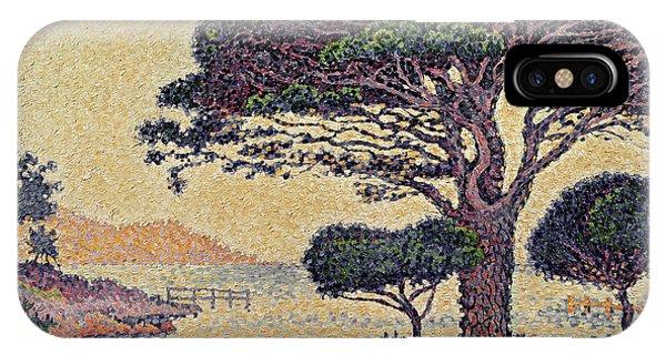 Umbrella Pine iPhone Case - Umbrella Pines At Caroubiers by Paul Signac