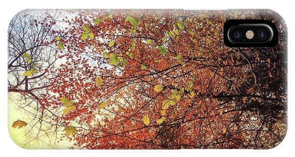 Under An Autumn Sky - No.2 IPhone Case