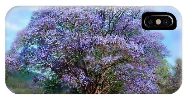 Beauty In Nature iPhone Case - Under The Jacaranda by Carol Cavalaris