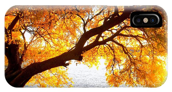 Under The Yellow Tree IPhone Case