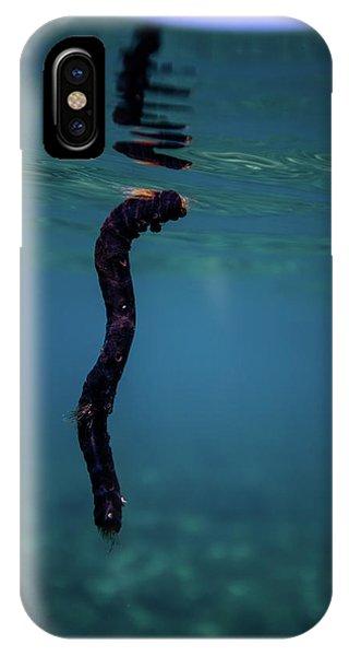 Underwater Branch IPhone Case