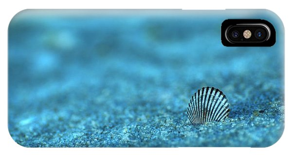 Underwater Seashell - Jersey Shore IPhone Case