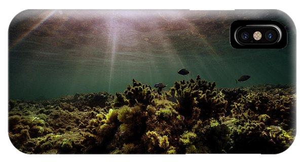 Underwater Sunset IPhone Case