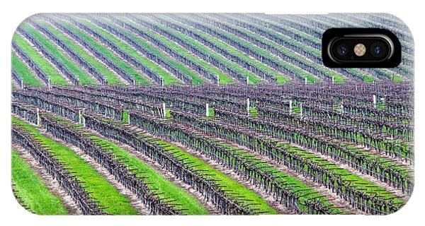Undulating Vineyard Rows IPhone Case