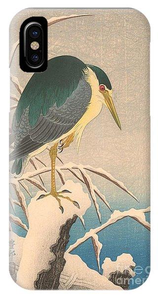 Unknown Bird IPhone Case