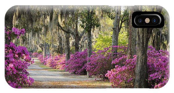 Unpaved Road With Azaleas And Oaks IPhone Case