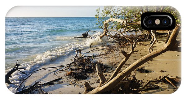 The Unspoiled Beaty Of Barefoot Beach Preserve In Naples, Fl IPhone Case