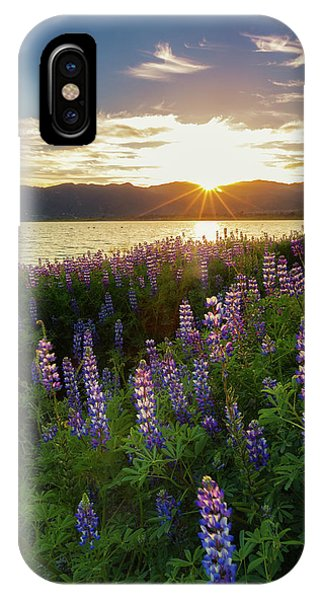 Untamed Beauty IPhone Case