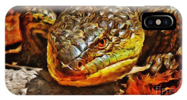 iPhone Case - Up Close And Personal by Blair Stuart