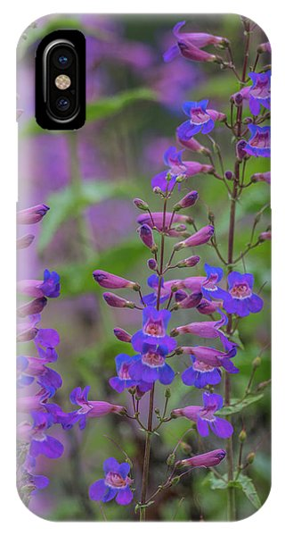 Up Close And Personal With Beauty IPhone Case