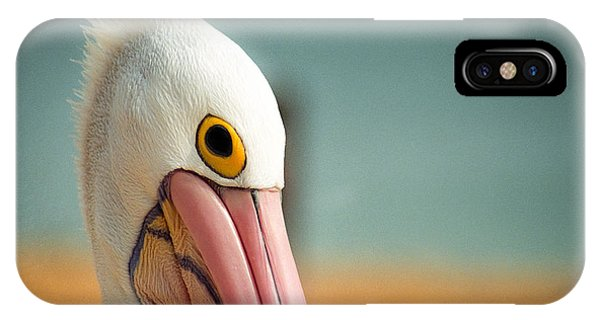 IPhone Case featuring the photograph Up Close And Personal With My Pelican Friend by T Brian Jones