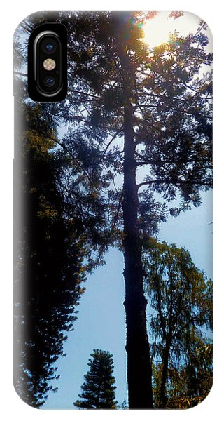 Up In The Sky Trees IPhone Case