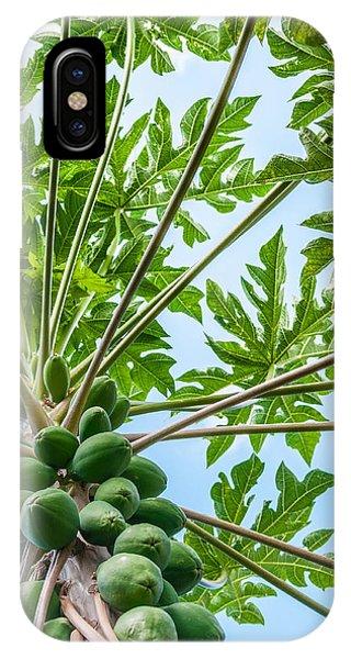 Up The Papaya IPhone Case