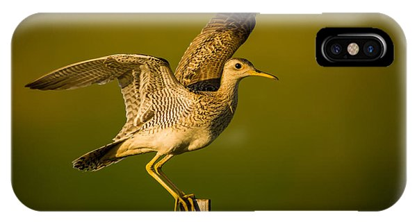 Upland Sandpiper On Steel Post IPhone Case