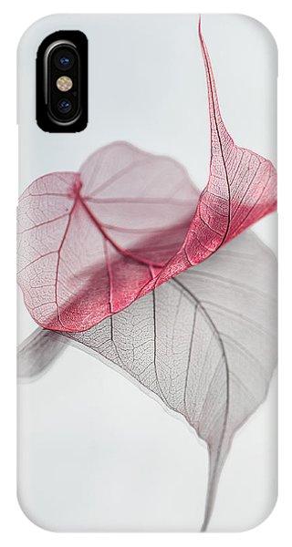Leaf iPhone Case - Uplifted by Maggie Terlecki