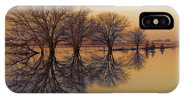 Upon Reflection IPhone Case