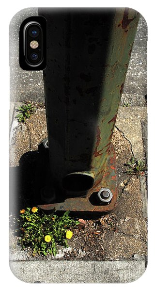 Dandelions Grow Through Concrete In Baltimore IPhone Case