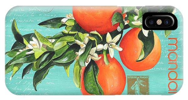 Agriculture iPhone Case - Valencia 2 by Debbie DeWitt