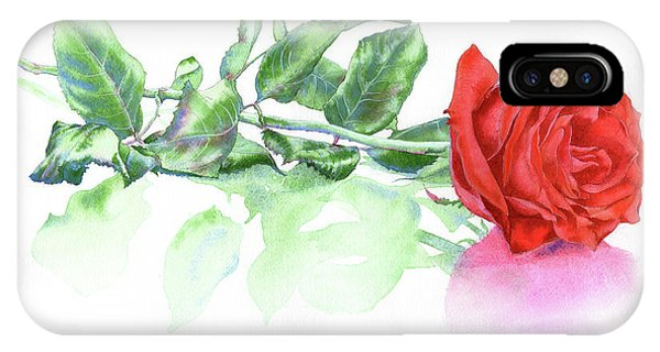 Valentine Rose IPhone Case