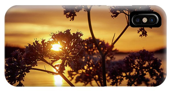 Valerian Sunset IPhone Case