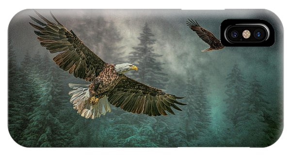 Valley Of The Eagles. IPhone Case