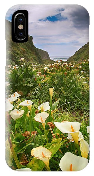 Valley Of The Lilies IPhone Case