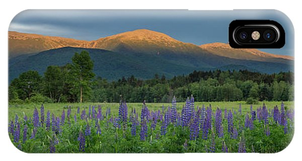 Valley Way Lupine Sunset IPhone Case