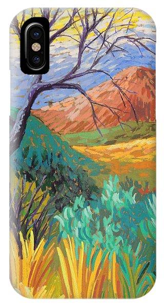 Van Gogh In Thefranklins IPhone Case