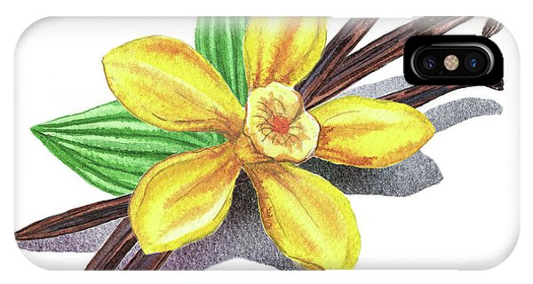 Lid iPhone Case - Vanilla Sticks And Flower by Irina Sztukowski