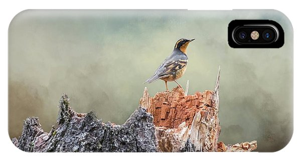 Varied Thrush On A Dead Tree IPhone Case