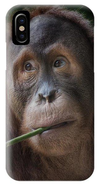Vegetarian IPhone Case