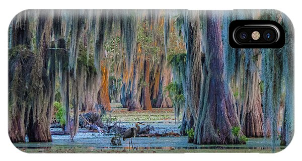Unveiling The Secrets Of Da Swamp At Cypress Island Preserve IPhone Case