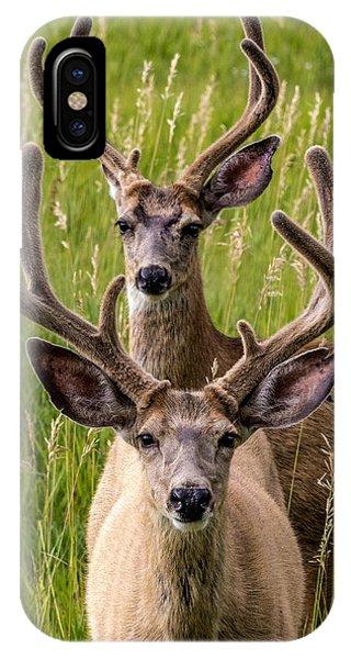 Velvet Bucks IPhone Case