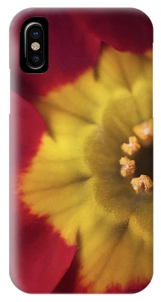 Velvet Crush IPhone Case