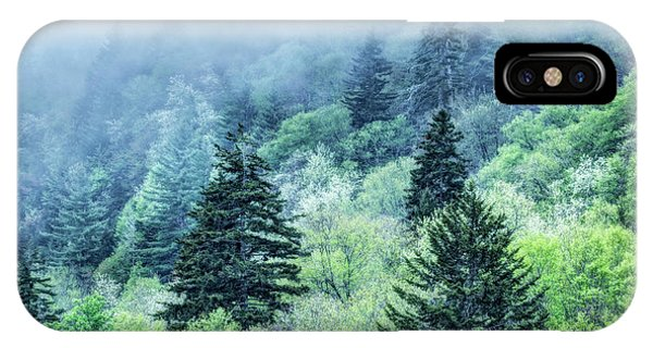 Verdant Forest In The Great Smoky Mountains IPhone Case
