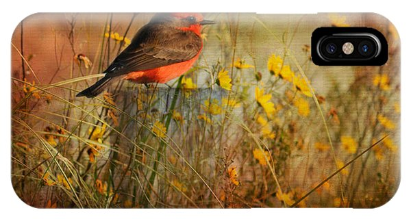 Wakulla iPhone Case - Vermilion Flycatcher At St. Marks by Carla Parris