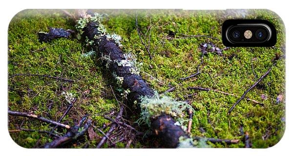 Vermont Forest. Phone Case by Robert Davis