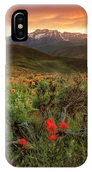 Vertical Timp With Wildflowers IPhone Case