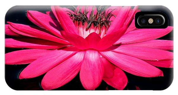 Very Pink Phone Case by Rosalie Scanlon