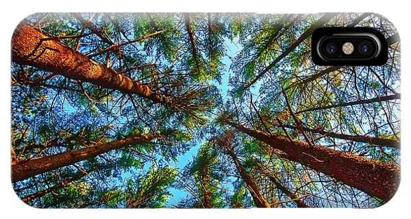 IPhone Case featuring the photograph  Veterans Acres Park Pine Grove by Tom Jelen