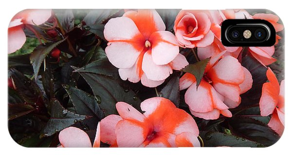 Plumerias Vibrant Pink Flowers IPhone Case