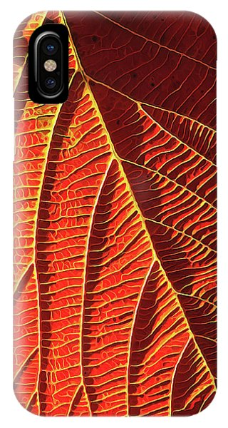 Luminous iPhone Case - Vibrant Viburnum by ABeautifulSky Photography by Bill Caldwell